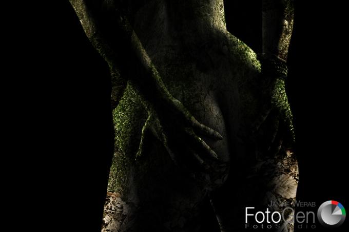 FotoGen-4-2