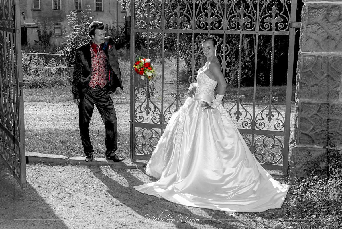 Hochzeit Seifersdorf (Wachau) bei Radeberg